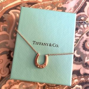Retired Tiffany & Co. Horseshoe Pendant